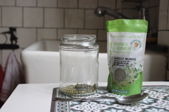 graines-germées-diy-homemade-maison-recette-germer-germes-soja